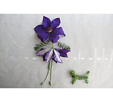 Playing With Vegetables : Flower series Photographic Print