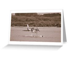 Seaplane at Port Macquarrie Greeting Card