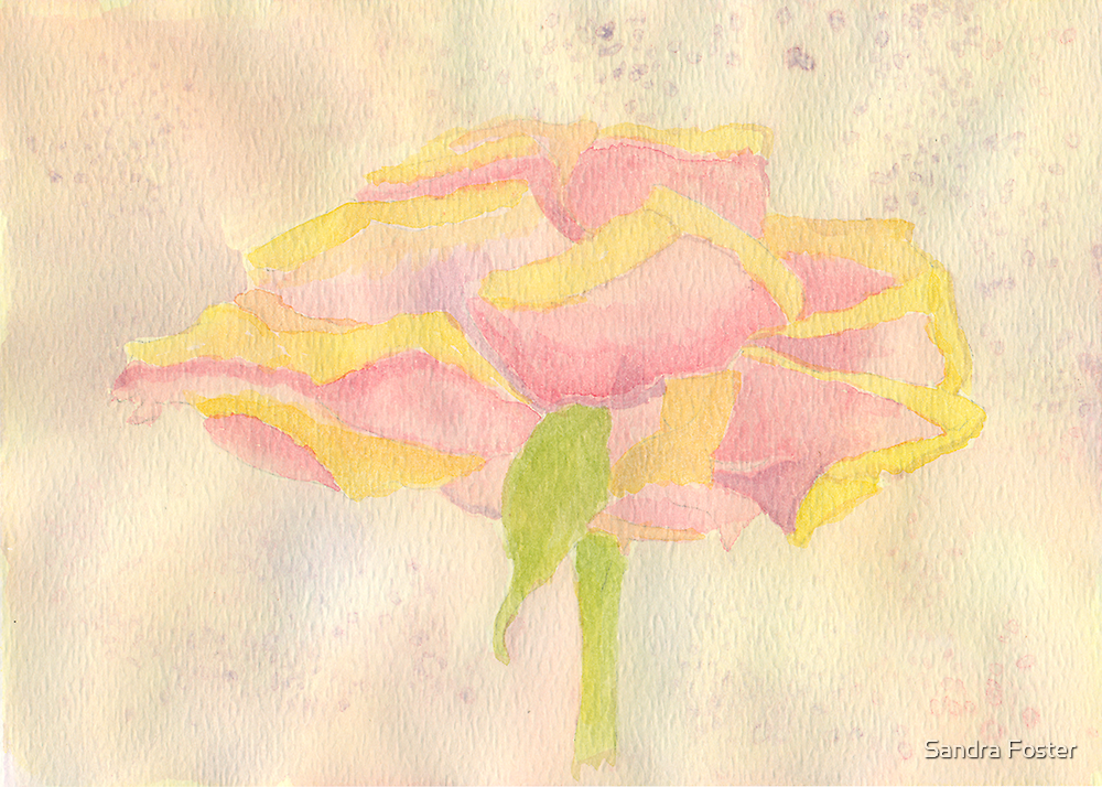 Watercolor Rose # 2 by Sandra Foster