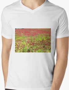 A field of common sainfoin (Onobrychis viciifolia) Photographed in Tuscany, Italy  Mens V-Neck T-Shirt