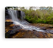 The Weeping Rock. Canvas Print