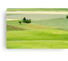 Rolling green hills with trees Photographed in Umbria, Italy Canvas Print
