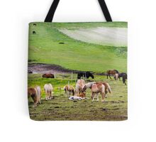 horses graze in the rolling green hills with trees Photographed in Umbria, Italy Tote Bag