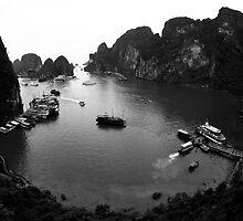 Tourist Bay by Pat Lynch