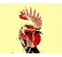 Funky Chicken Photographic Print