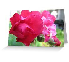 Kennebunk Beach Rose Greeting Card