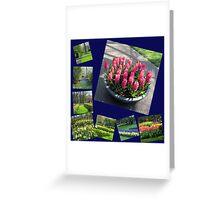 Keukenhof Collage featuring Pink Hyacinths Greeting Card