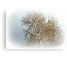 Winters Misty Dream Canvas Print