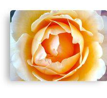 Peach Petals Canvas Print