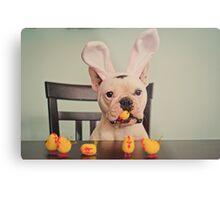 I am the Easter Bunny. Metal Print