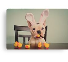 I am the Easter Bunny. Canvas Print