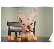 I am the Easter Bunny. Poster