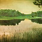 Up North Tranquility by enchantedImages