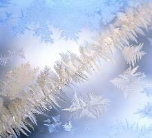 Ice Snow by birdys