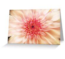 Chrysanthemum Blur Greeting Card