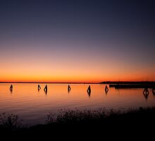 Rippleside at Dawn by STEViE VOiCE