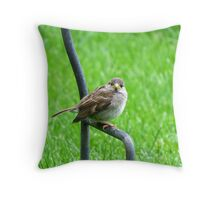 Paying Close Attention Throw Pillow
