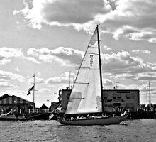 Sailing Past the Marina, Newport Harbor, Rhode Island by Jane Neill-Hancock