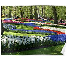 Flower Attraction Poster