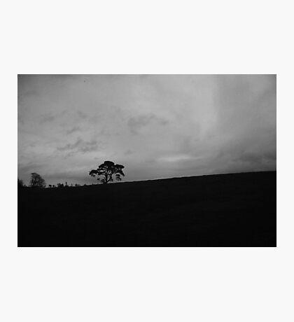Africa? Photographic Print