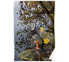 Swiss Autumn Poster