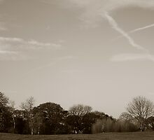 Cloud trails by jamesnortondslr