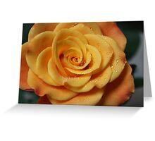 Birthday Rose Greeting Card
