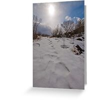Snow clad morning footsteps Greeting Card
