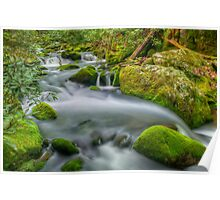 Roaring Fork River Poster
