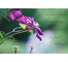 Mother's Garden Photographic Print