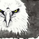 Eagle Face-digital painting by debrosi
