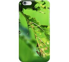 eating by caterpillars  iPhone Case/Skin