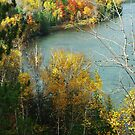 Au Sable Overlook by enchantedImages