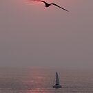 We Are Sailing - Estamos Navegando A Vela by Bernhard Matejka
