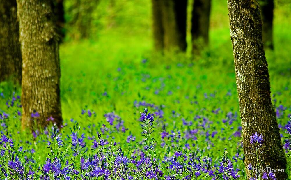 A Little Bit Of Spring by Nick Boren