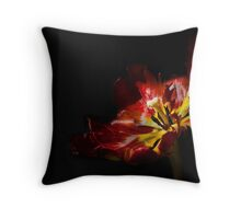 Gleam With Luster Redux Throw Pillow