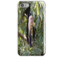 White faced Monkey iPhone Case/Skin