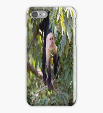 White faced Monkey iPhone Case/Skin