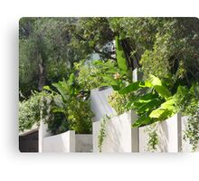 What Is On The Other Side Of This Wall On Cap Ferrat? Canvas Print