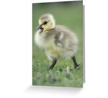 Momma wait for me!!! Greeting Card