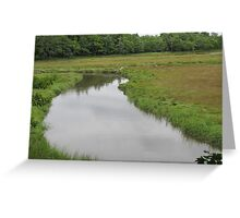 Rachel Carson Wildlife Sanctuary, Wells, Maine Greeting Card
