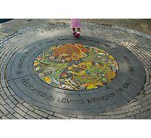 Mosaics in Tadpole Playground, Boston Common, Boston MA Photographic Print