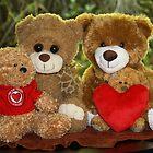 The Teddy Bear Family Portrait by aussiebushstick