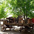 Transportation by marilyn diaz
