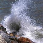 Wave Action by NVSphoto