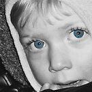 Little Blue Eyes by Mary Fox