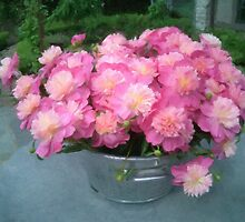 A Bucket of Peonies by Tom  Reynen
