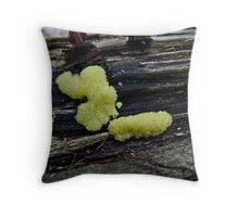 Yellow Insect Egg Slime Mold - Stemonitis axifera Throw Pillow