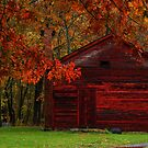 Autumn Accents by Mary Fox