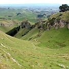 Te Mata Peak by John Sharp